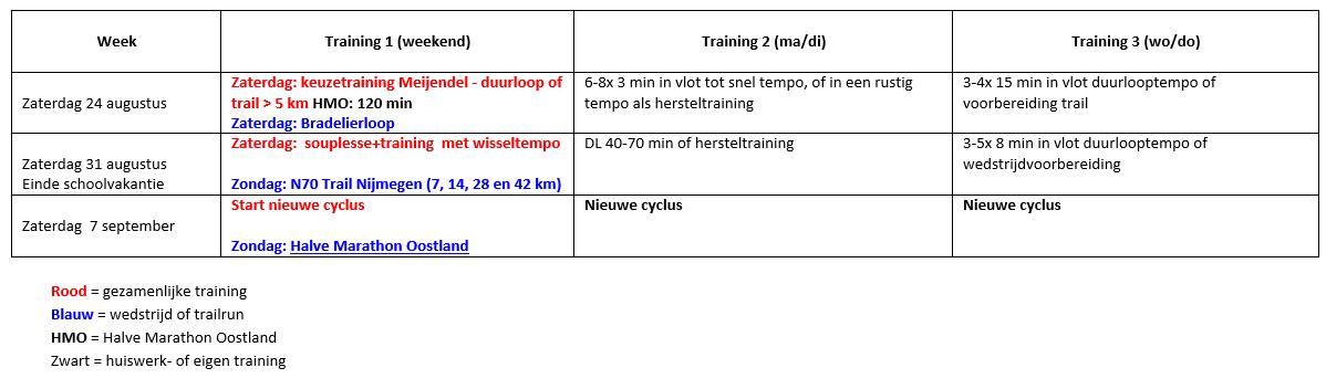 Zomercyclus 2019-02